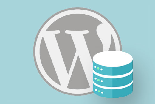 wpdbcalls - Wordpress Hız Optimizasyonu