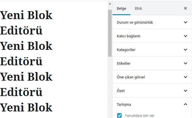 blok editor sag - Gutenberg Nasıl Kullanılır?