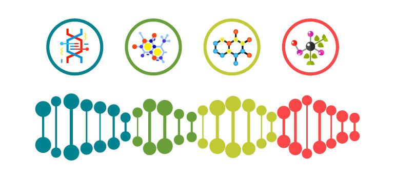 dna yapisi - DNA Nedir?